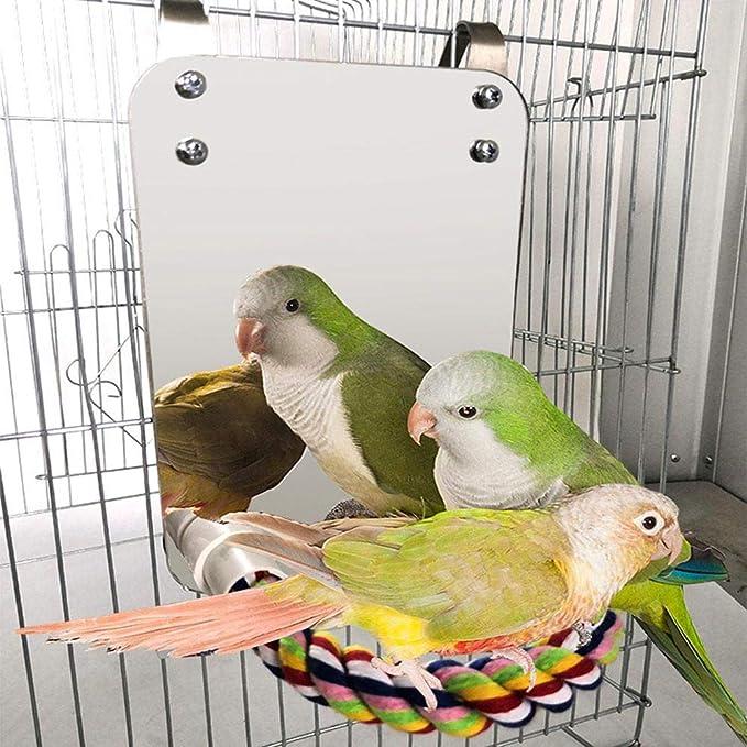 WUYANSE Edelstahl Vogel Spiegel Vogelkäfig Zubehör Spielzeug Mit Bissfesten Seil Barsch, Vogel Spielzeug Für Nymphensittich Lovebirds Papageien