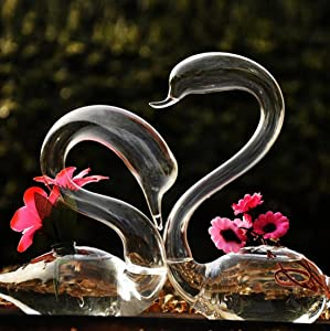 Unigift A Pair of Transparent Glass Swan Vase for Valentine Wedding Lovers Gift Household Home Decor