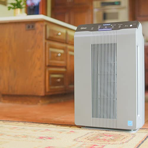 Winix 5300-2 Air Purifier with True HEPA, PlasmaWave and Odor Reducing Carbon Filter