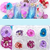 Minejin Nail Art True Dried Flower 3D Real Flower DIY Tips Stickers Decoration Kit 6 Colors