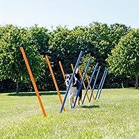 Trixie Dog Activity Agilité Slalom 115 x 3 cm 12 Pièces Bleu / Orange