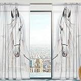 1 St/ück URIJK Transparent Gardine Zebra Muster Vorhang Volie Volievorhang Schal Fenstervorhang Fenster Dekoration /Ösenschal mit /Ösen f/ür Wohnzimmer Schlafzimmer