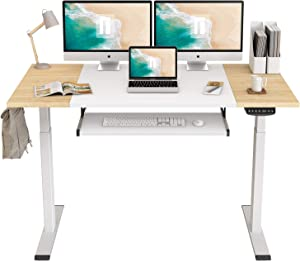 FEZIBO Dual Motor Height Adjustable Electric Standing Desk, 55 x 24 Inches Full Sit Stand Home Office Table with Splice Board, White Frame/Natural and White Top