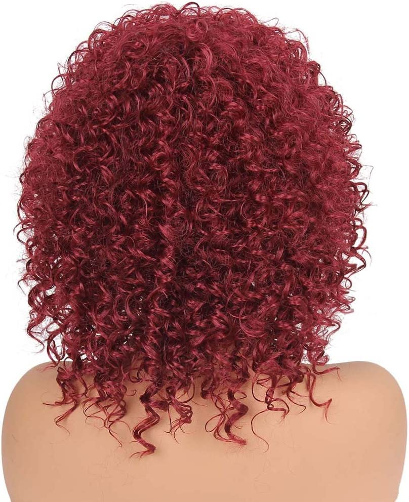 Xindda Synthetic Curly Hair Wigs Woman Short Kinky Hair Jet Black Heat Resistance Fiber,Fashion Hairstyles Custom Cosplay Party,Ship from USA You Can Get The Item Within 7 Days
