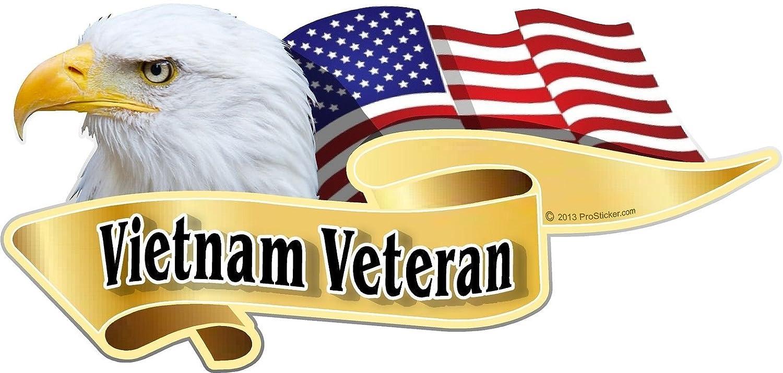 ProSticker 904 One 3 X 6 American Pride Series Vietnam Veteran Bald Eagle Decal Sticker ProSticker.com