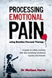 Processing Emotional Pain using Emotion Focused Therapy: A guide to safely working with and resolving emotional injuries…