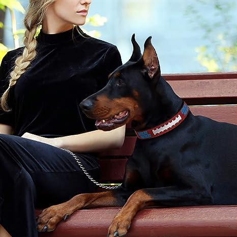53cbe3c9d Pet Supplies   Pets First NFL Carolina Panthers Premium Dog Collar ...