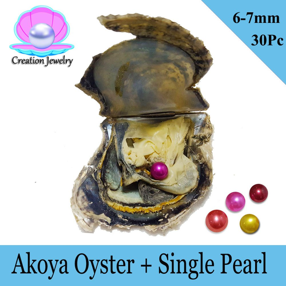 Bulk 30 pcs AAA round Pearls in Akoya Oysters 6-7MM Pearls Saltwater Pearl Oyster Christmas Present