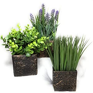 Valynn's Veranda Artificial Greenery - Lavender Boxwood Eucalyptus Watergrass, Set of 3 Pots, 8.86