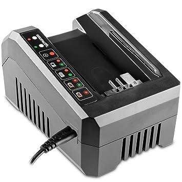 Greencut CHAR-56V - Cargador para baterías de lítio de 2,0Ah y 4,0Ah, 56V