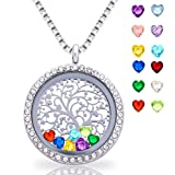 Amazon Price History for:Floating Living Memory Lockets Pendant Necklace 30mm Round Toughened Glass All Birthstone Charms Include