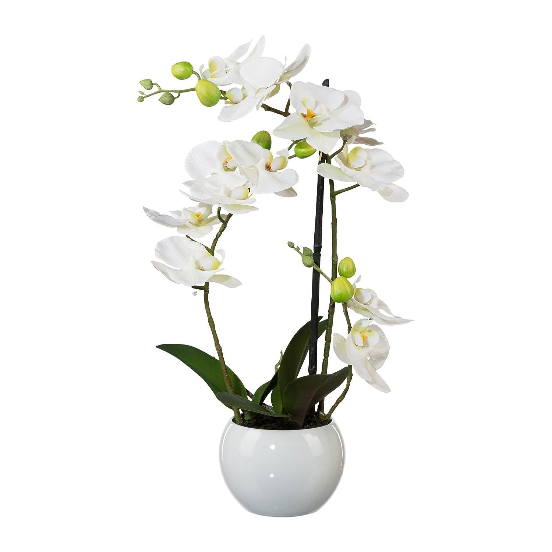 Deutschmade 人工3Dプリント花 21インチ フェイクホワイトオーキッド胡蝶蘭アレンジメント ホワイトセラミック花瓶付き B079Y9356K