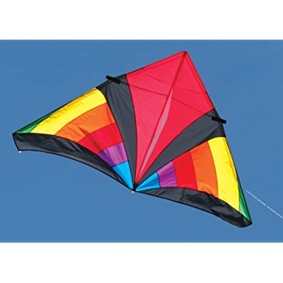 Into The Wind 7-ft. Rainbow Levitation Delta Kite: Toys & Games