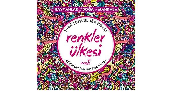 Renkler Ulkesi Kolektif 9786059144094 Amazon Com Books