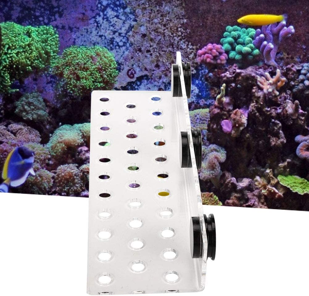 4 Hole Coral Frag Rack Acrylic Magnetic Coral Frag Holder Support Coral SPS Button Bracket Base for Fish Tank Aquarium