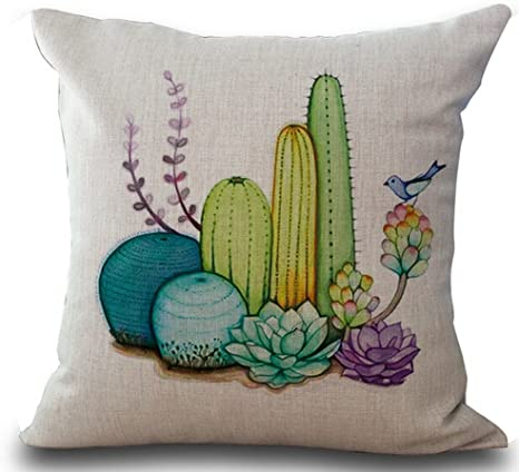 Amazon Com Fresh And Colorful Hand Painted Potted Succulents Cactus Home Cotton Linen Throw Pillow Case Personalized Cushion Cover New Home Office Decorative Square 18 X 18 Inches Home Kitchen