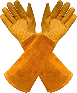 Gardens Leather Gardening Gloves for Women and Men | Thorn and Cut Proof Garden Work Gloves with Long Heavy Duty Gauntlet | Suitable For Thorny Bushes Cacti Rose (Medium, Yellow)