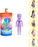Barbie Color Reveal Chelsea Doll with 6 Surprises: Water Reveals Doll's Look & Creates Color Change on Hair; 4 Mystery…