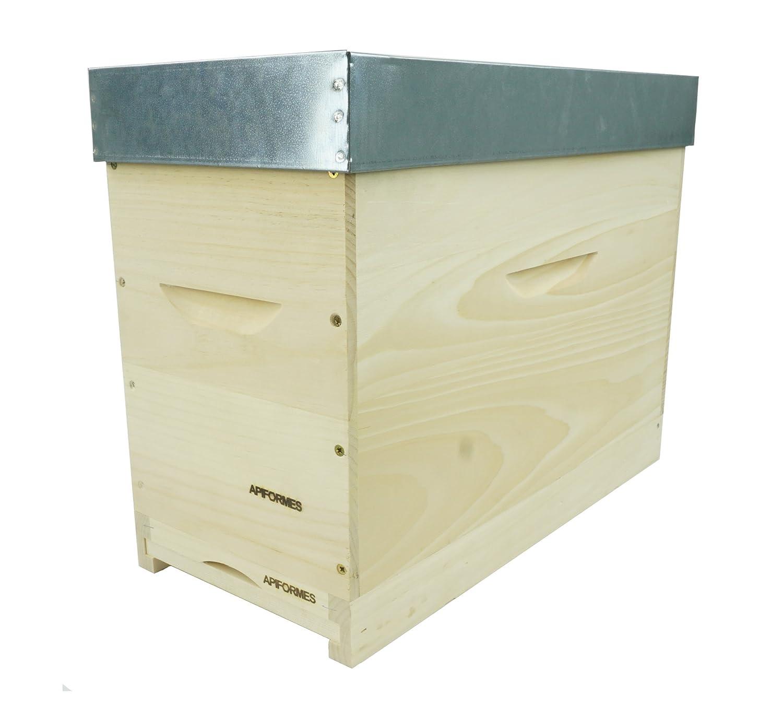 APIFORMES ableger vibrazione DADANT Foglia LANGSTROTH in legno massiccio + 5 raehmchen + fodera zarge + tetto Apicoltura Apicoltura necessità