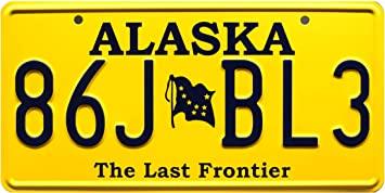 Custom State Personalized Novelty Photo License Plate