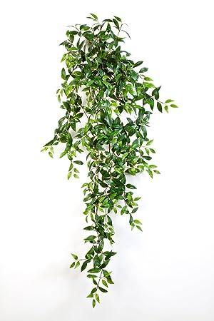 Plante artificielletradescantia fluminensis 730 feuilles vertes plante artificielletradescantia fluminensis 730 feuilles vertes 125 cm plante artificielle tombante buisson altavistaventures Image collections
