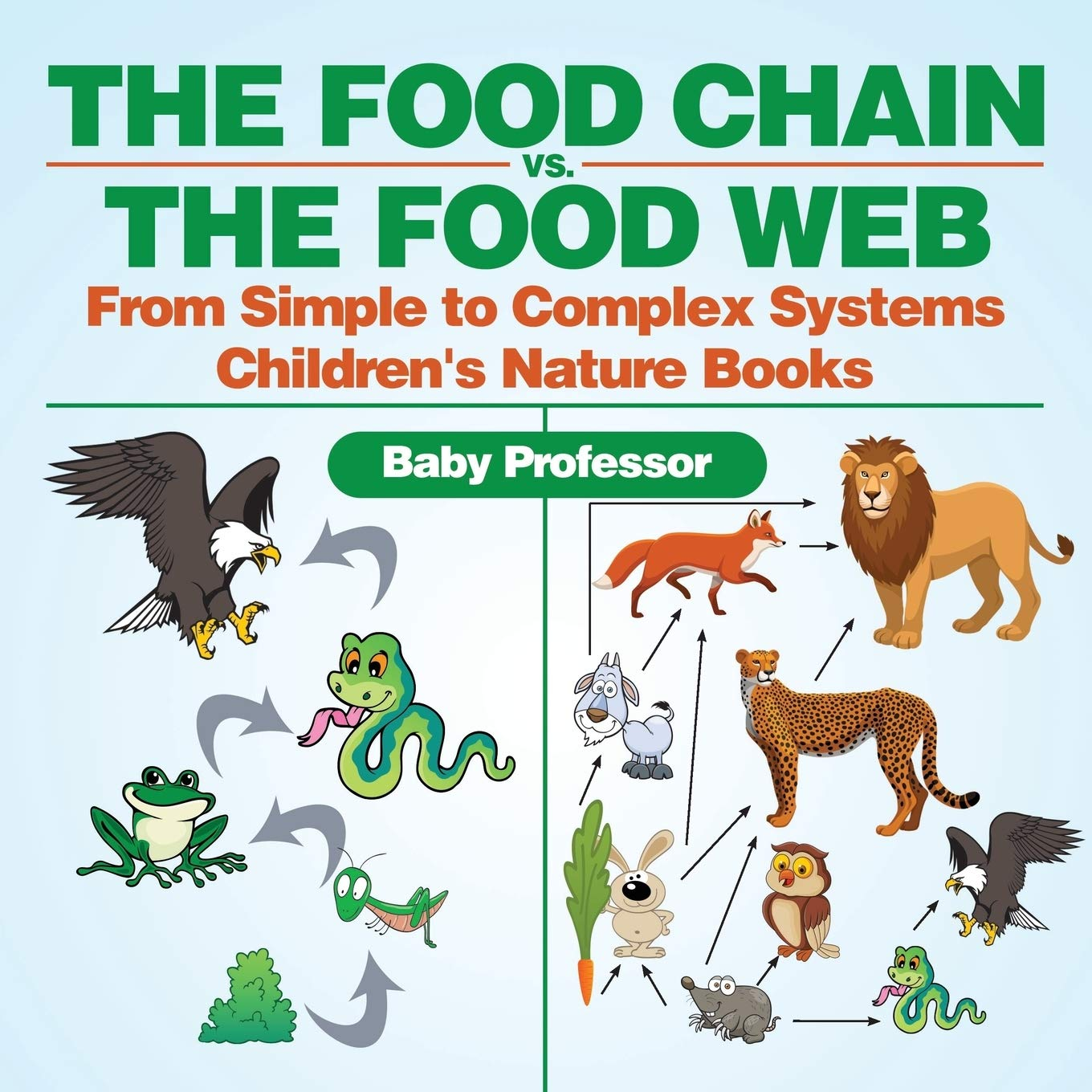 Food Chain Word Find - Get Coloring Pages   1360x1360