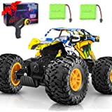 DOUBLE E RC Car 4WD Remote Control Car 2 Batteries Unique Colorful Shell Off Road Monster Truck 2 Powerful Motors…