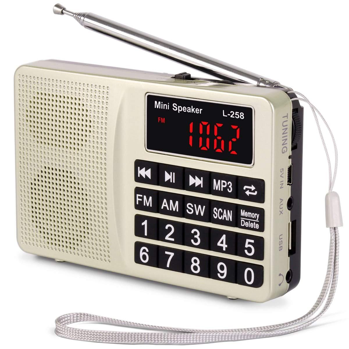 Prunus L-258SW Radio portatile Sw/FM/Am(MW)/SD/TF/USB(0-64 GB) MP3 con altoparlante(Ojo: No se Puede memorizar Las emisoras manualmente)