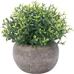 HC STAR Artificial Plant Potted Mini Fake Plant Decorative Lifelike Flower Green Plants
