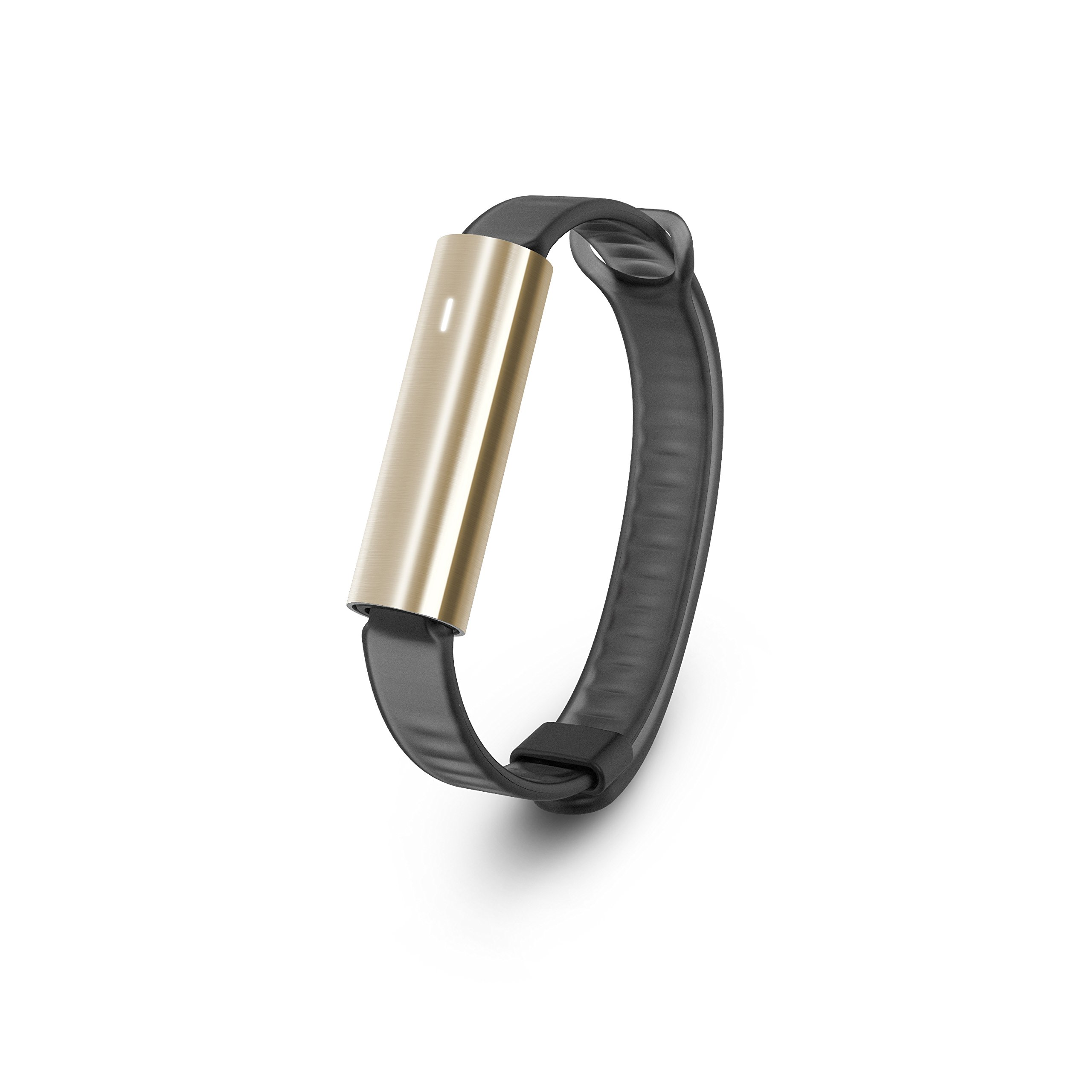 Misfit Ray - Fitness + Sleep Tracker with Black Sport Band (Stainless Steel Gold)