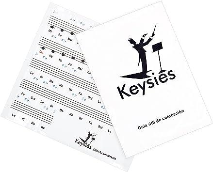 Pegatinas Keysies para notas musicales, transparentes, de plástico ...