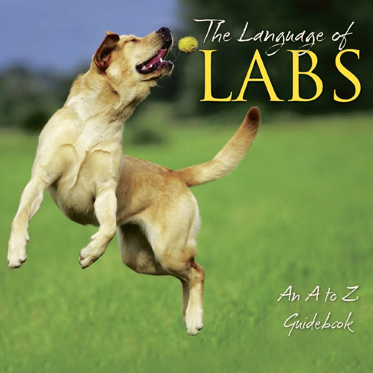 The Language of Labs by Willow Creek Books