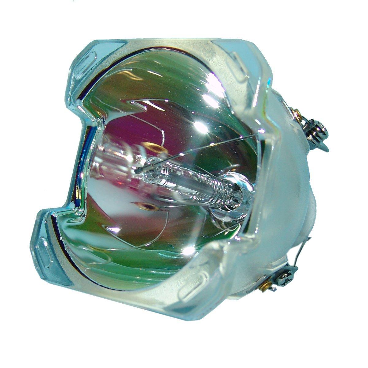 Lutema OEM プロジェクター交換用ランプ ハウジング/電球付き ProjectionDesign Action用 M5 Economy Economy Lamp Only B07KTJWL35