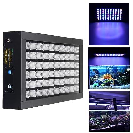 CDXDSV 60W Dimmable 60 LED de espectro completo crecen la lámpara del acuario tanque de peces