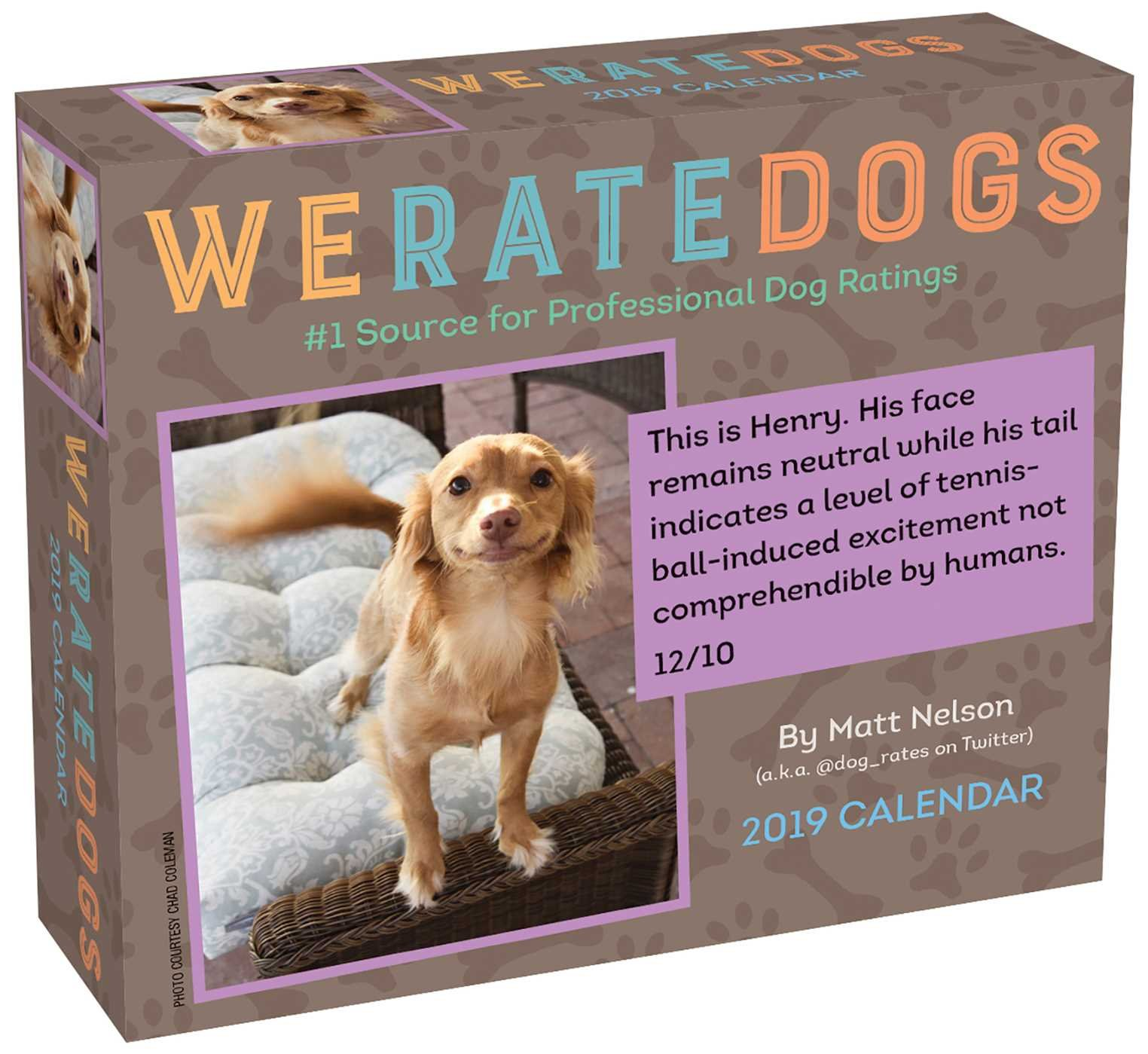 WeRateDogs 2019 Day-to-Day Calendar Calendar – Day to Day Calendar, July 31, 2018 Matt Nelson Andrews McMeel Publishing 1449492967 Calendars