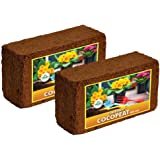 TrustBasket COCOPEAT Block(650 Grams)-EXPANDS to 16 litres of Coco PEAT Powder (Set of Two 650grm Blocks)