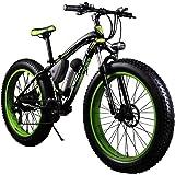 RICH BIT® RT-012 Vélos électriques Assistance Cruiser Vélo 350W 36V 10.4Ah 26 Pouce 4.0 Fat eBike 21 Vitesse Batterie au Lithium