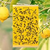 10 pcs Dual-Sided Yellow Sticky Traps for Flying Plant Insect Like Fungus Gnats, Whiteflies, Aphids, Leaf Miners, Thrips…