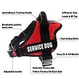 FAYOGOO Dog Vest Harness for Service