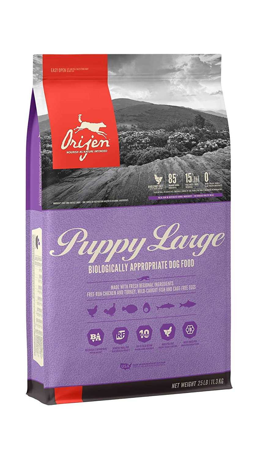 ORIJEN Puppy Large High-Protein, Grain-Free, Premium Animal Ingredient, Dry Dog Food