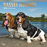 Basset Hounds 2018 12 x 12 Inch Monthly Square Wall Calendar with Foil Stamped Cover, Animals Dog Breeds Hound