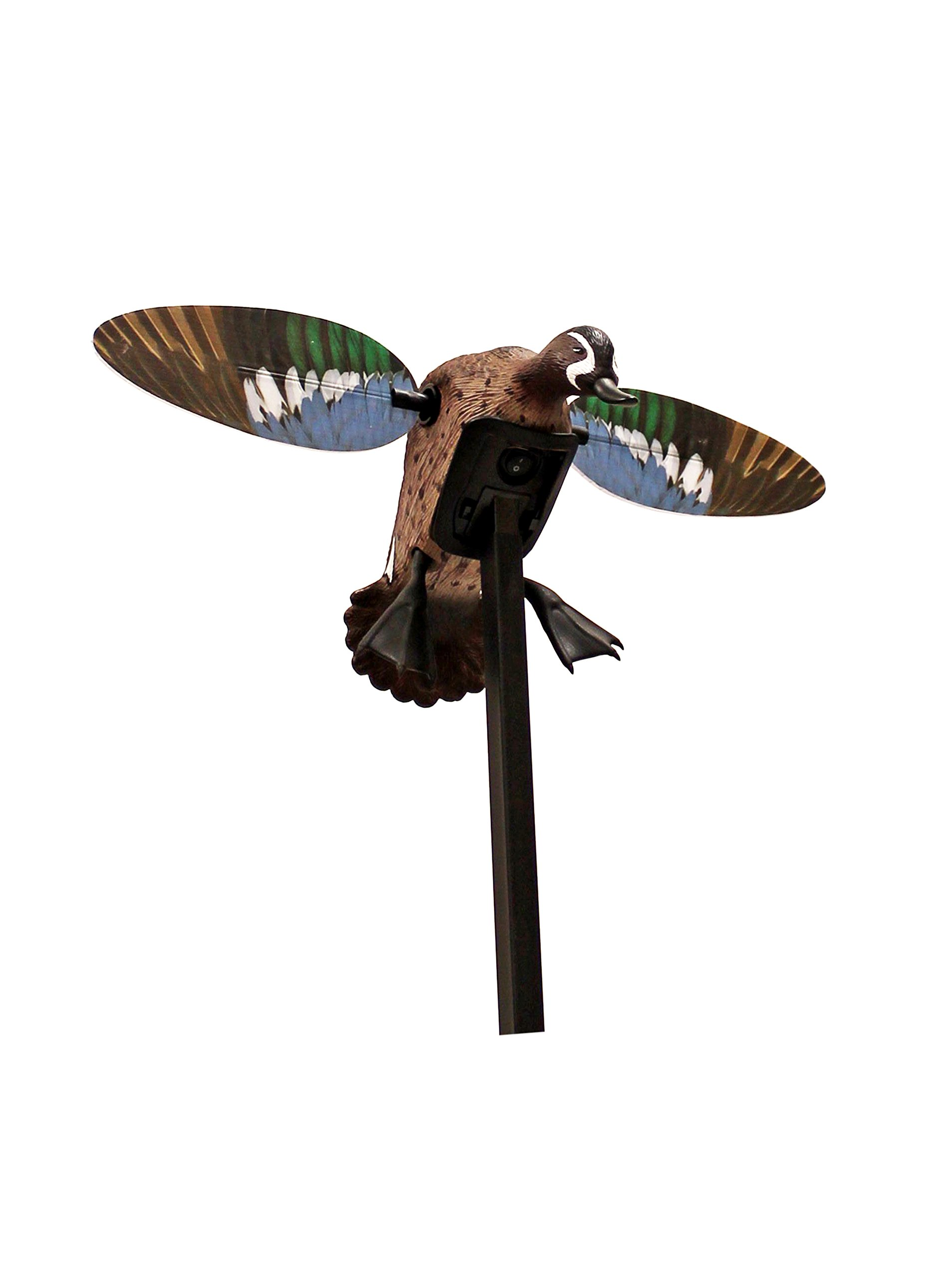 MOJO Outdoors Elite Series Duck Hunting Motion Decoy, Blue Wing Teal (New) by MOJO Outdoors