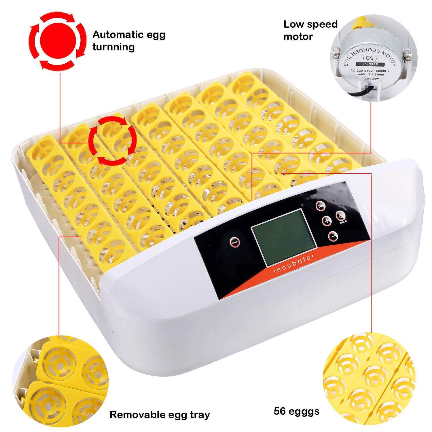 Currens 56 Egg Incubator with Eggs Turner,Digital Automatic Incubators for Hatching Chicken Duck Quail Birds Eggs Poultry Hatcher,Encubadora De Huevos by Currens (Image #10)