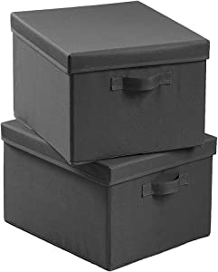 SEMAXE Foldable Fabric Storage Box with Lid, Decorative Linen Filing & Storage Office Box | Letter/Legal | Charcoal | (Gray, 2 Pack)