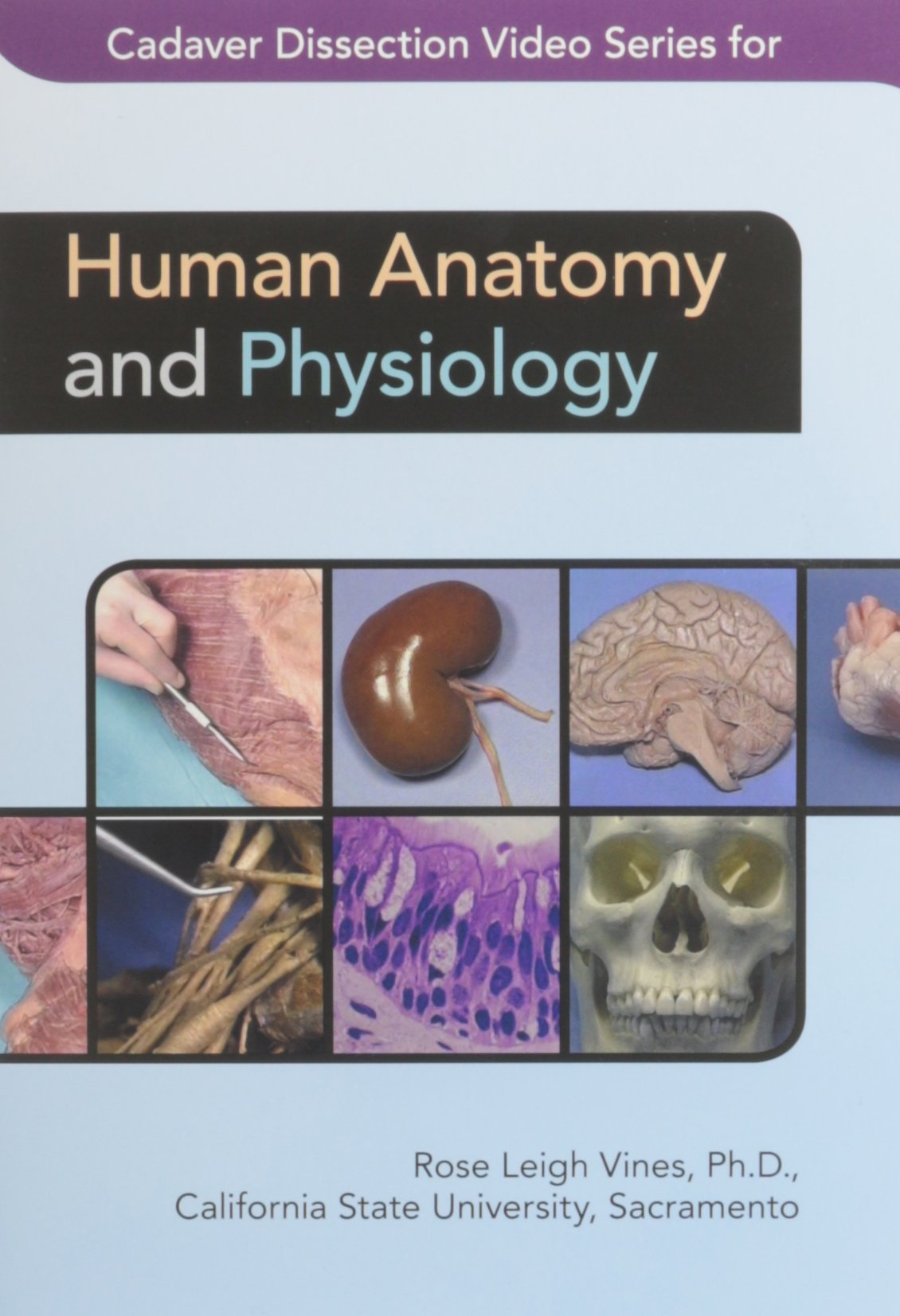Buy Cadaver Dissection Video Series for Human Anatomy and Physiology ...