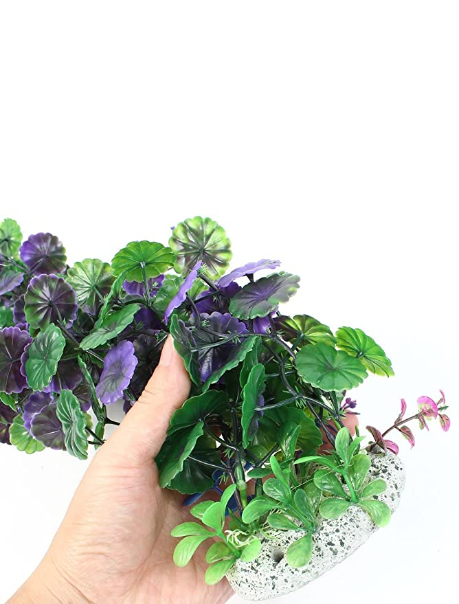 Amazon.com : eDealMax Planta de plástico Pescado tanque Hoja Redonda acuática 20, 9 pulgadas de alta Verde Violeta : Pet Supplies