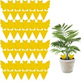 24 Pack Yellow Sticky Traps, Fly Fruit and Fungus Gnat Trap Killer for Indoor/Outdoor Plant Use