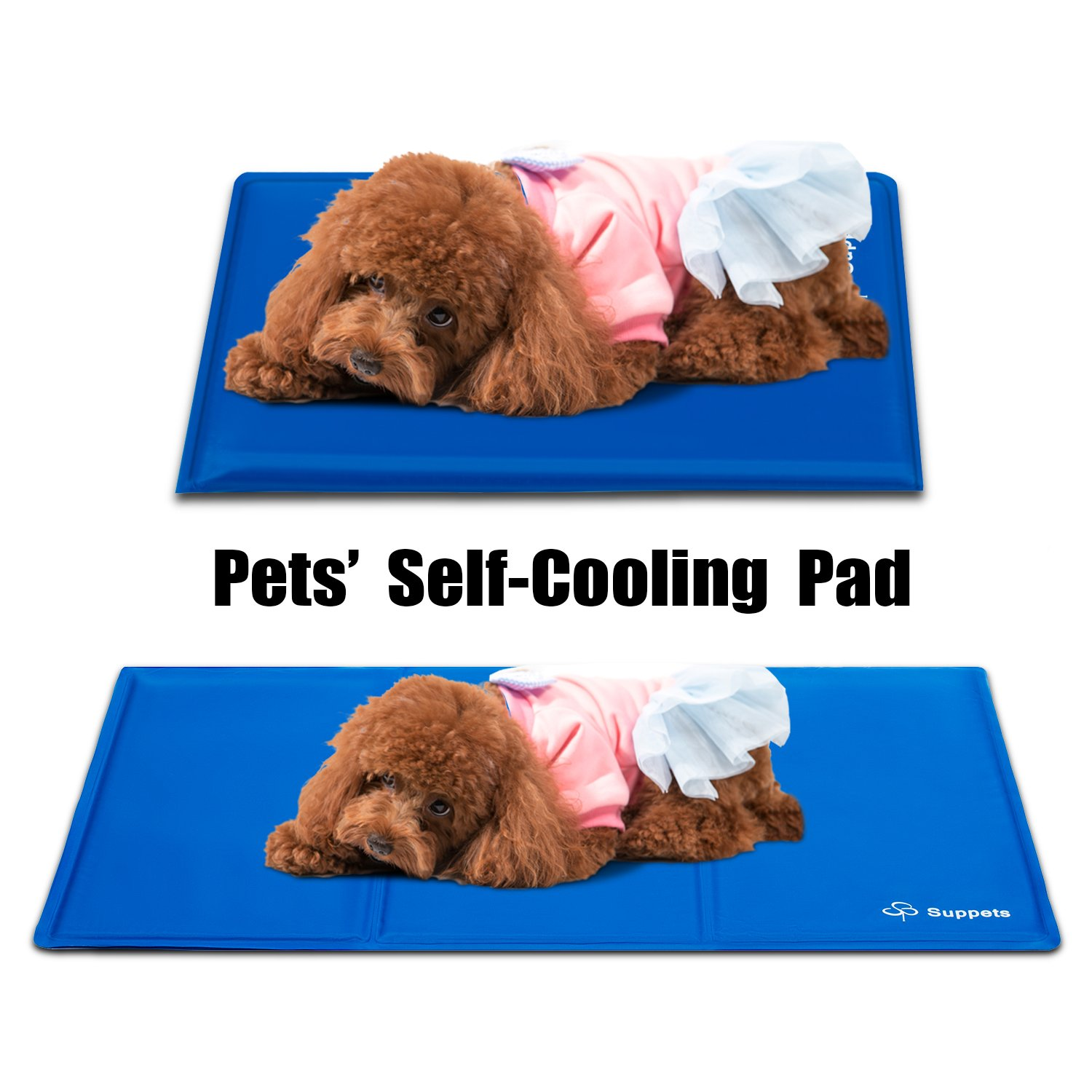mats beds of for photo dogs cooling att bed pads x dog petco