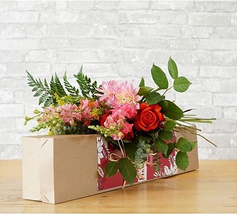 Mainstreet Flower Subscription Box Like Memberships And Subscriptions Amazon Com