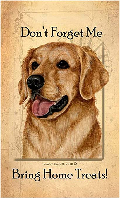 Yellow Labrador Dog Matches Case holder Home Gift NEW